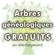 Commencer Sa Généalogie Débuter Et Rechercher Ses Ancêtres