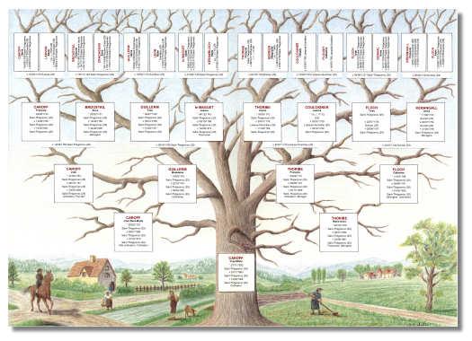 logiciel arbre généalogique
